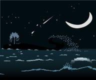 在海的鲸鱼 图库摄影
