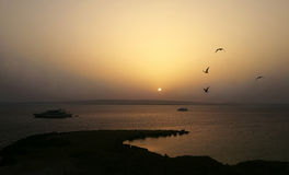在海的Sunrize 免版税库存照片