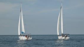 在海种族的豪华游艇 蓝色颜色黑暗的losed赛船会航行航行天空体育运动赢利地区 影视素材