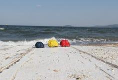 在海背景的色的壳 库存图片