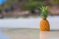 在海背景的菠萝 图库摄影