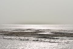 在海背景的金黄阳光,背景 免版税库存图片