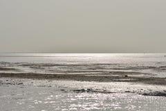 在海背景的金黄阳光,背景 免版税图库摄影