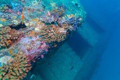 在海蓝色,马尔代夫的海难 免版税库存照片