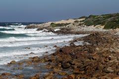 在海角圣法兰西斯,南非的海岸 免版税库存照片