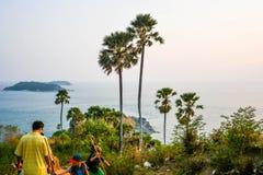 在海角的棕榈树 库存照片