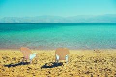 在海边的两张白色海滩睡椅 复制空间 夏天、假日和旅行概念 免版税库存照片