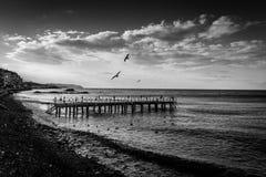在海边的使荒凉的钢建筑码头 库存图片