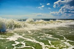 在海边的大veawes 免版税库存图片