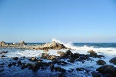 在海边的浪端的白色泡沫 库存图片