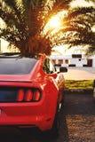 在海边附近的明亮的红色野马 免版税库存照片