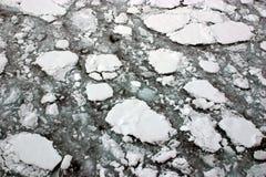 在海运冰熔化,黑白照片 免版税库存图片