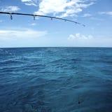 在海运的钓鱼竿 免版税库存图片