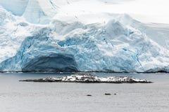 在海附近的冰川 免版税库存照片