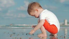 在海附近的逗人喜爱的小孩戏剧,孩子抓住,考虑活海壳,螃蟹,在一个热带海滩反对 股票视频