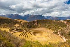在海鳗的同心大阳台,神圣的谷,秘鲁 免版税库存图片