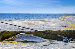 在海鳟以后的春天渔 免版税库存照片