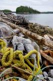 在海滩、黄色多绳索和漂流木头的漂在海上的难船 免版税库存图片