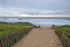 在海滩上的桑迪走道反对清早阴云密布地平线 免版税图库摄影