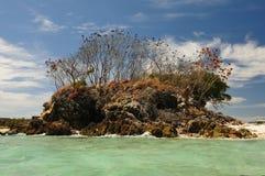 在海洋之中的小的海岛 库存图片