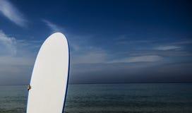 在海滩关闭的水橇板 免版税库存照片