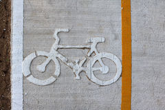 在海滩和杉木庭院附近骑自行车方式 库存照片