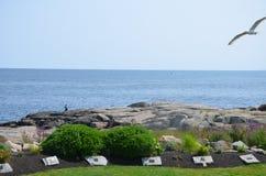在海滩在缅因美国 免版税图库摄影