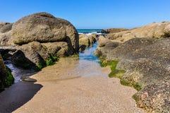 在海滩在蓬塔del蝙蝠鱼在乌拉圭 免版税图库摄影
