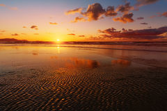 在海滩岸的日落 免版税库存图片