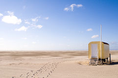 在海滩德国的滨草草 免版税图库摄影