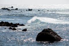在海洋挥动 库存图片