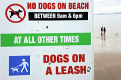 在海滩标志的没有狗 图库摄影