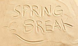 在海滩沙子和海鸥画的春假 库存图片