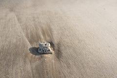 在海滩沙子的小卵石 免版税库存图片