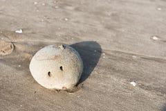 在海滩沙子的小卵石 免版税库存照片