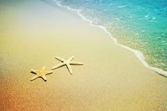 在海滩沙子的海星 免版税库存图片