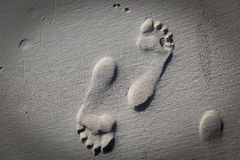 在海滩沙子的详细的光秃的人的脚印 免版税库存照片