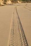 在海滩沙子的轮胎轨道 免版税库存图片