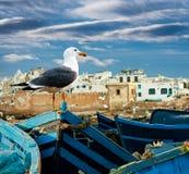 在海洋海岸的渔船 图库摄影