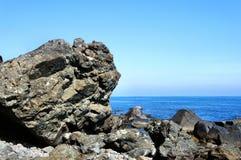 在海滩的一块巨大的石头 库存照片