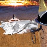 在海滩的一对正义已婚夫妇 香宾,面纱,蛋糕 免版税库存图片