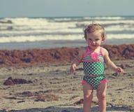 在海滩的一点cutie 库存照片