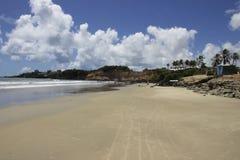 在海滩的一美好的天 库存图片