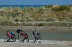 在海滩的三辆自行车 库存图片