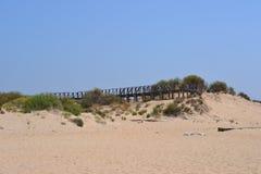 在海滩的下午太阳 库存图片