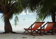 在海滩的两张海滩睡椅在海附近的棕榈树下 库存图片
