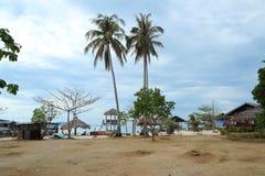 在海滩的两棵椰子树 库存照片