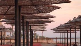 在海滩的伞由太阳点燃了在日落 股票录像
