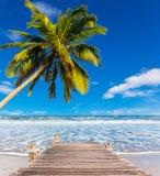 在海滩的假期 免版税库存图片