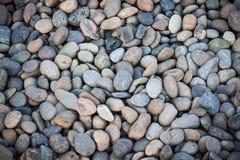 在海滩的光滑的小卵石 库存照片